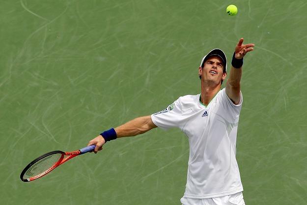 Anglik Andy Murray /AFP
