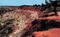 Angola: krajobraz z okolic Luandy /Encyklopedia Internautica