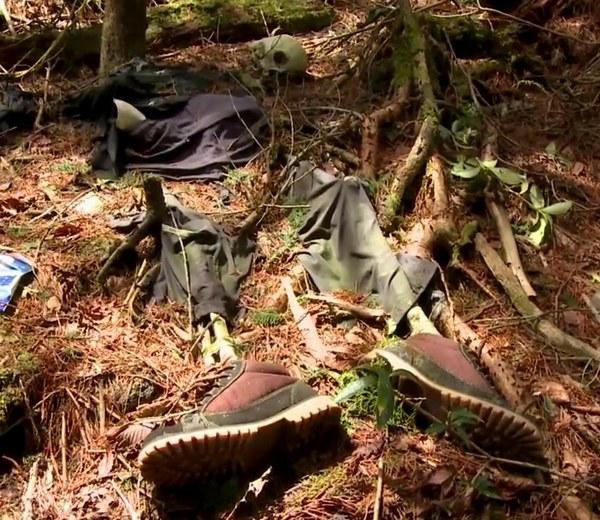 foresta dei suicidi