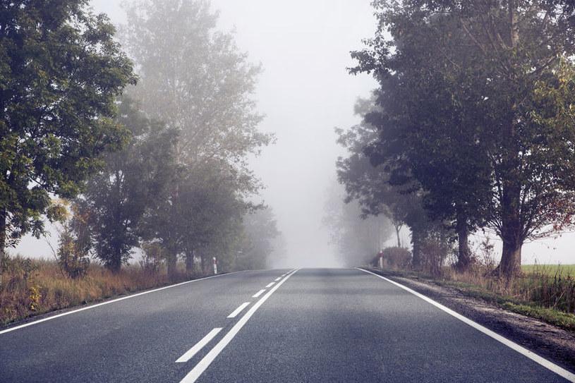 Aplikacja forDrivers będzie nagradzać kierowców /©123RF/PICSEL