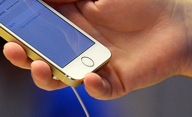 Apple stawia na czytniki linii papilarnych? /AFP