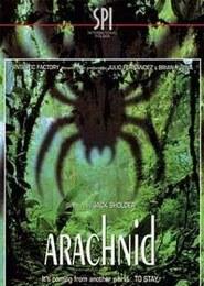 Arachnid – pajęczyna śmierci