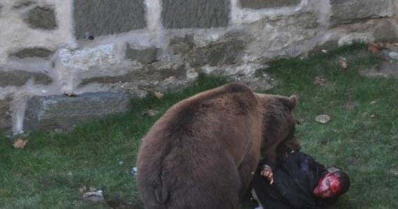 Nowa Zelandia Atak Film Photo: Atak Niedźwiedzia
