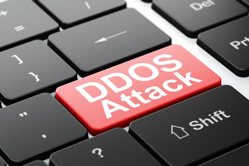 Ataki DDoS stanowią jeden z najdroższych cyberataków dla firm /123RF/PICSEL