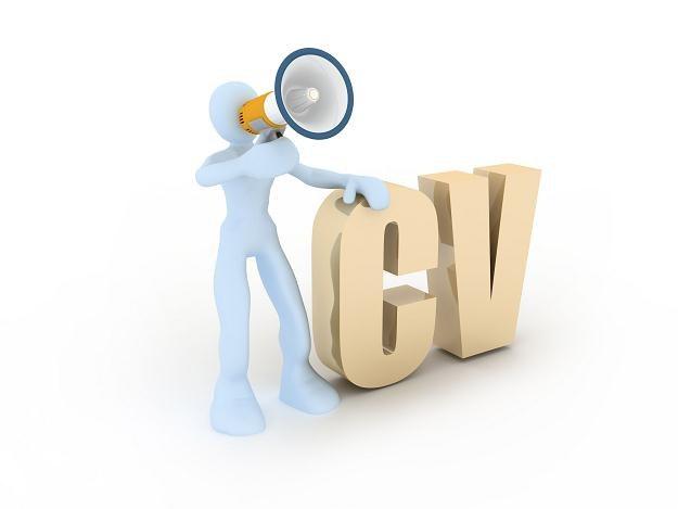 Atrakcyjne CV nie zawsze świadczy o kompetencjach pracownika /123RF/PICSEL