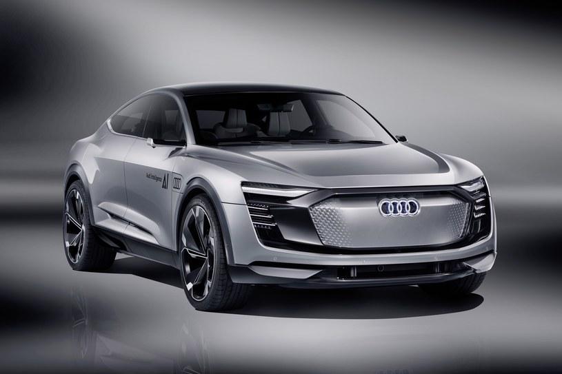 Audi Elaine /