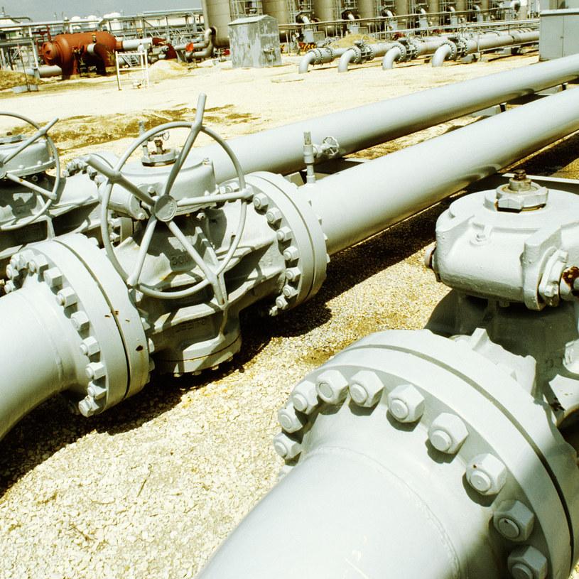 Australijska branża gazowa nad Bałtykiem /© Glowimages