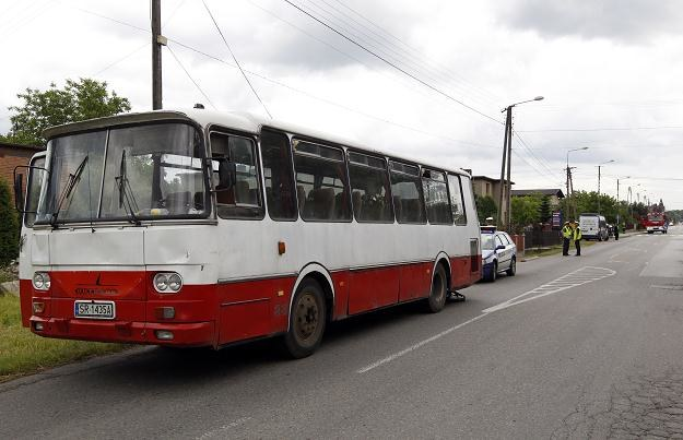 Autobus nie wyhamował przed przejściem /PAP