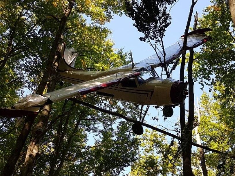Awionetka zawisła w koronach drzew, znaleźli ją robotnicy leśni /PSP /