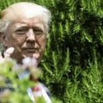 Axios Media: Donald Trump zamierza wycofać się z porozumienia klimatycznego z Paryża