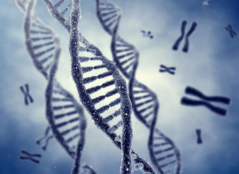 Badania DNA mogą pomóc w dobraniu diety /123RF/PICSEL