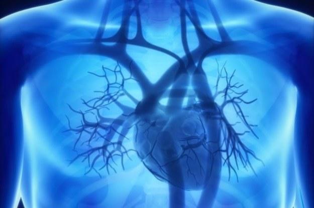 Badanie CCTA ułatwi pracę kardiologom? /©123RF/PICSEL