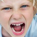 Bakterie jelitowe kształtują temperament