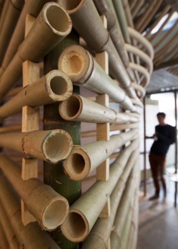 Bambusowe domki powstaną wewnątrz większych kompleksów (Fot. AFFECT-T) /materiały prasowe