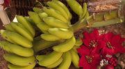 Banan a dieta