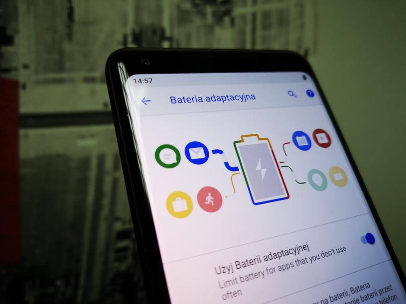 Bateria adaptacyjna /INTERIA.PL