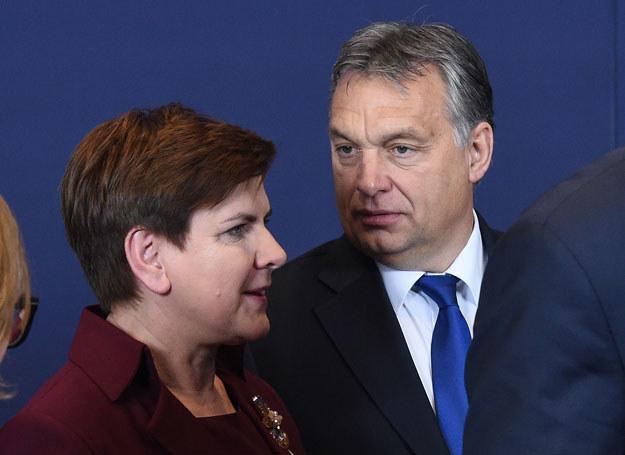 Beata Szydło z Viktorem Orbanem /Radek Pietruszka /PAP/EPA