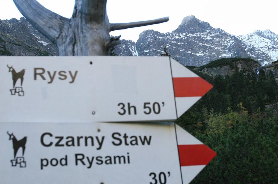 Będzie prościej dostać się na szlak /Grzegorz Momot /PAP