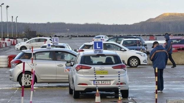 Będzie stała cena za kurs prawa jazdy?