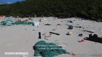 Bezludna wyspa pełna plastikowych śmieci. Niepokojące odkrycie