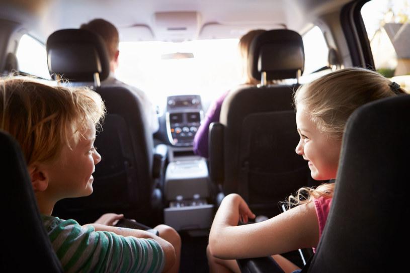 Bezpieczeństwo i ekonomia - to najważniejsze kryteria doboru idealnego, rodzinnego auta /©123RF/PICSEL