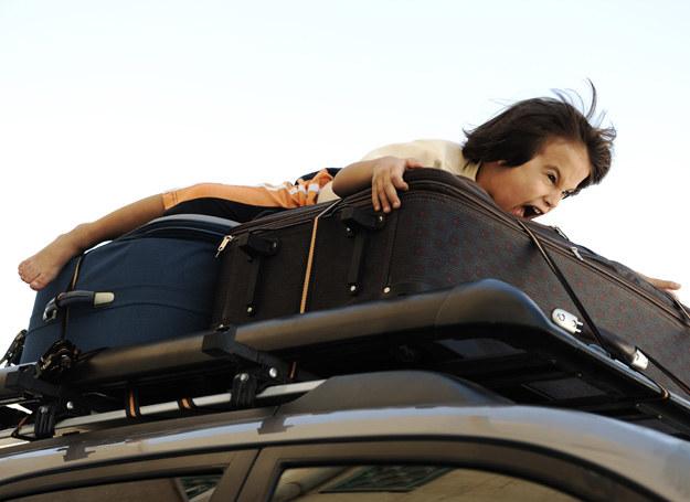Bezpieczeństwo w podróży to podstawa! /123RF/PICSEL