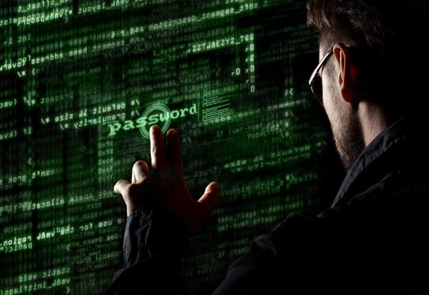 Bezpieczeństwo w sieci będzie coraz popularniejszym tematem w instytucjach rządowych oraz firmach obsługujących rozbudowane segmenty klientów /123RF/PICSEL
