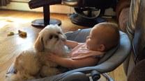 Beztroskie popołudnie małych przyjaciół