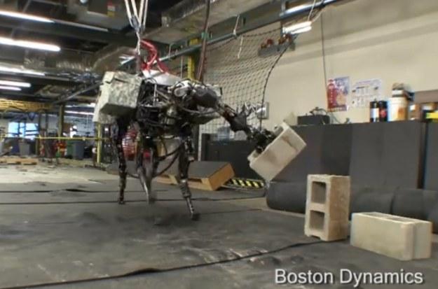 Big Dog.  Fot. Boston Dynamics /materiały prasowe
