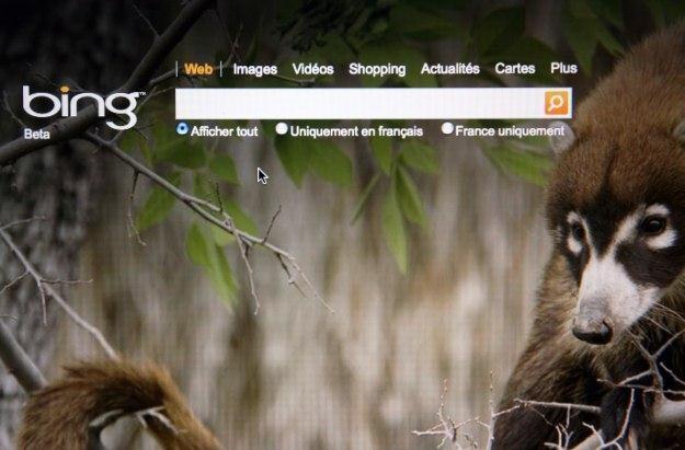 Bing ma się stać dużo bardziej społecznościowy /AFP