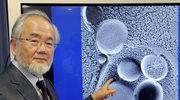 Biologiczna enigma doktora Ohsumiego