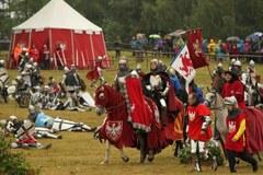 Bitwa pod Grunwaldem anno domino 2014