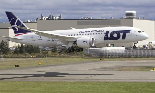 Boeing 787 Dreamliner jest jednym z najnowocześniejszych i najbezpieczniejszych samolotów pasażerskich /AFP