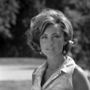 Bogumila Wander - od połowy lat 70. zapowiadała na żywo programy w TVP1 i TVP2. Była konferansjerką na festiwalach piosenki