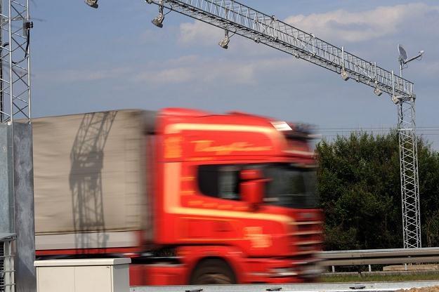 Bramownice pojawią się na wąskiej, jednopasmowej drodze / Fot: Wojciech Stróżyk /Reporter
