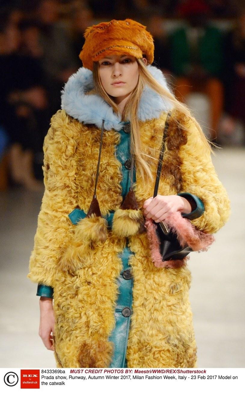 Bretonki podbiją serca fashionistek? /East News
