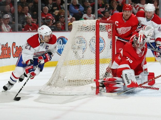 Brian Gionta, kapitan Montreal Canadiens szturmuje bramkę  Jimmy'a Howarda (Detroit Red Wings) /AFP