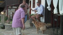 Brytyjczycy opuszczają kraj. Zaczynają nowe życie w Bułgarii
