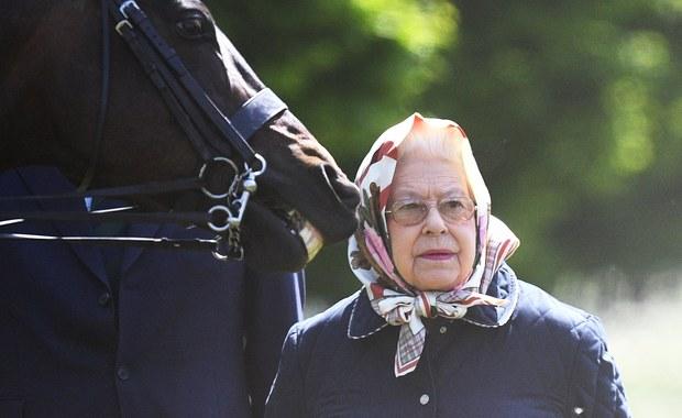 Brytyjska królowa ma powód do radości. Jej konie zarobiły ponad pół miliona funtów