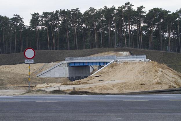 Budowa autostrady A1 / Fot: Adam Wysocki /East News