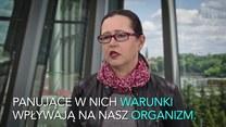 Budynki trują Polaków. Smog to niejedyny problem