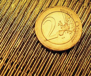 Bujak: Euro dla Polski w najbliższych 5-10 latach nie jest optymalnym wyborem
