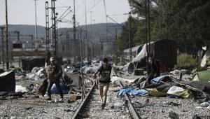 Bułgaria odeśle 87 migrantów do Grecji
