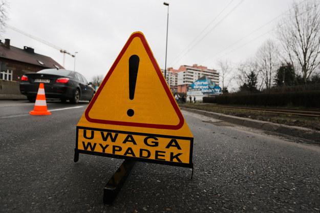 """Bus zderzył się z jeleniem. Kierowca """"pod wpływem"""" wiózł 8 pasażerów (zdjęcie ilustracyjne) /Jakub Porzycki /FORUM"""