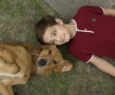 """""""Był sobie pies"""", czyli o czym myśli czworonożny przyjaciel człowieka"""