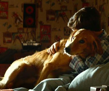 """""""Był sobie pies"""" [trailer]"""