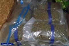 CBŚP przechwyciło 138 kg narkotyków