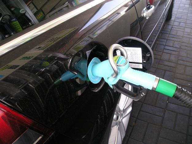 Ceny benzyny 98 przekroczą 5 zł /INTERIA.PL
