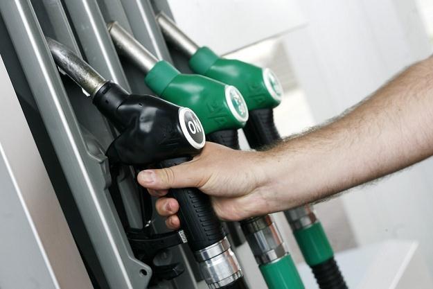 Ceny paliw idą w górę / Fot: Zbyszek Kaczmarek /East News