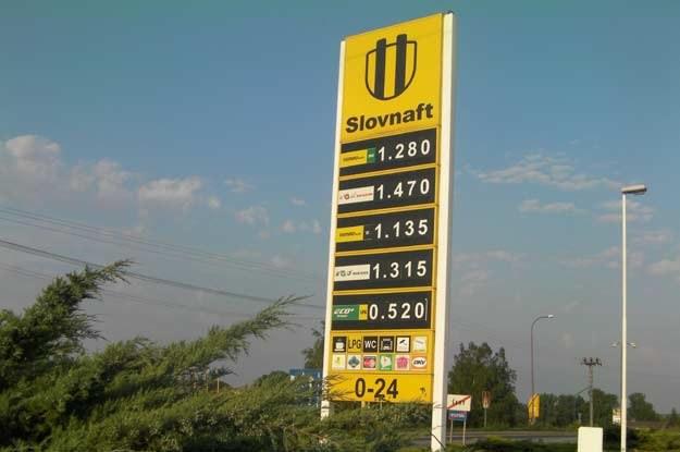 Ceny paliw na Słowacji. 1 euro =  4.0300 zł. /